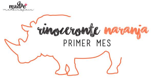 1MES_rinoceronte